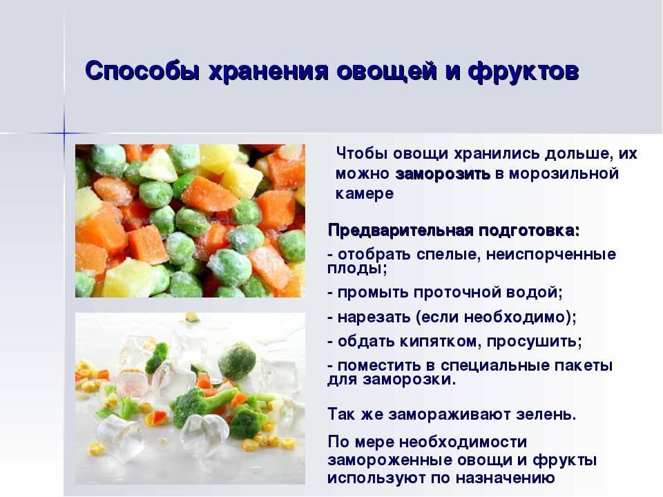 Хранение овощей — сроки и условия: как правильно хранить овощи
