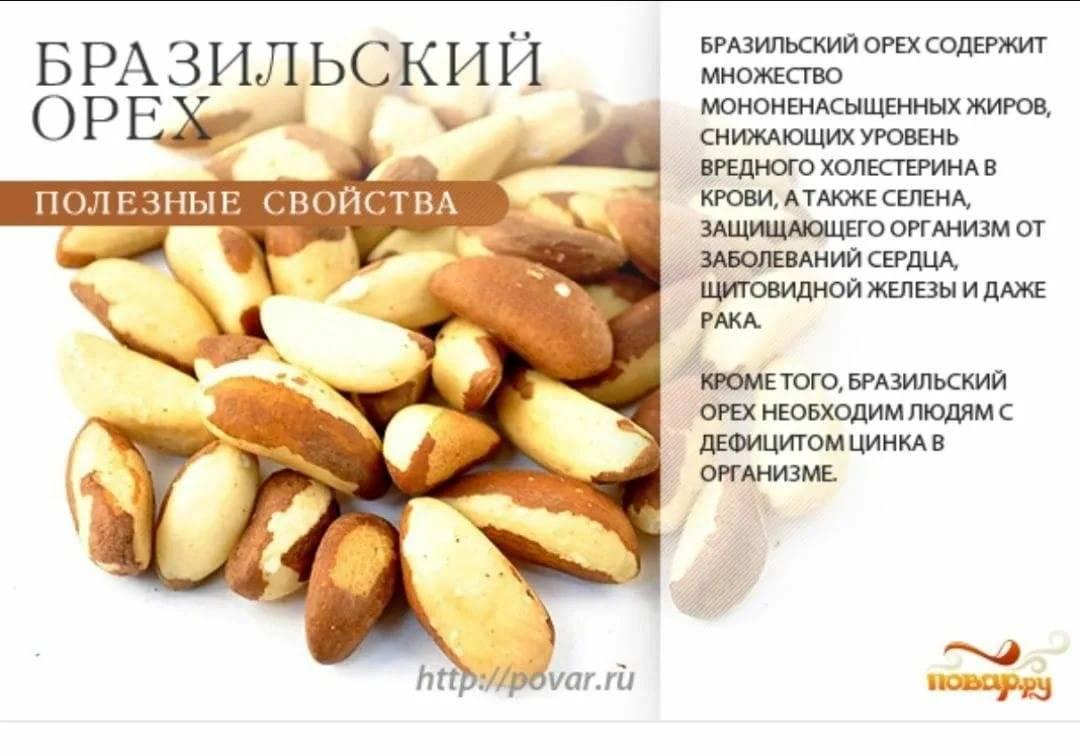 Очищенные кедровые орехи: польза и вред. сколько в сутки можно их съедать?