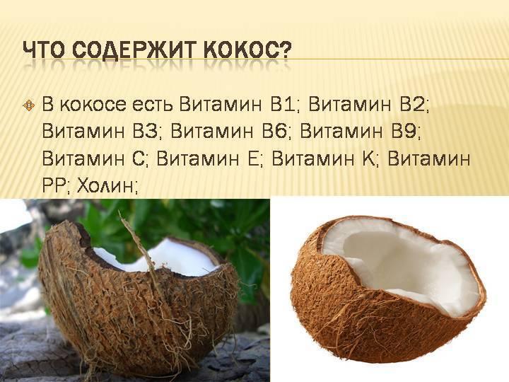 Кокос польза и вред для здоровья организма женщин, мужчин, детей