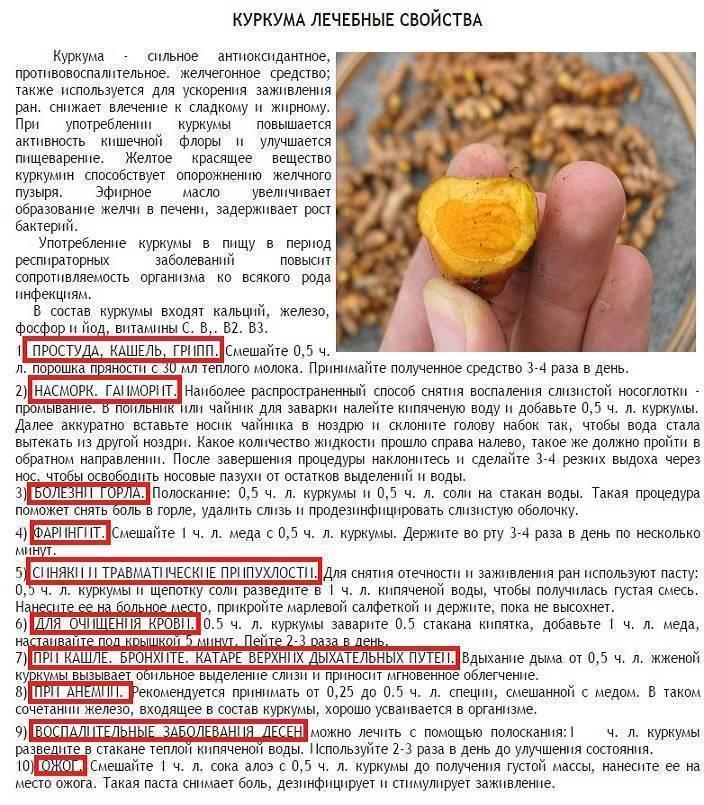 Польза и вред меда для организма мужчин и женщин, рецепты здоровья, отзывы