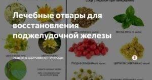 Грецкие орехи при панкреатите можно или нет