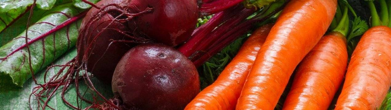 Как правильно замораживать морковь и свеклу