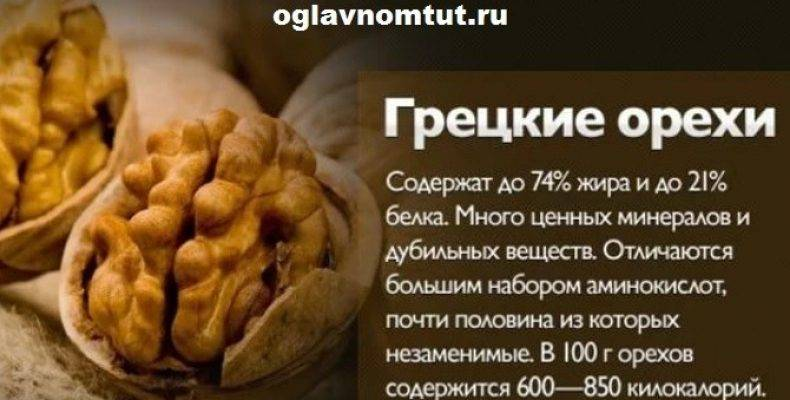 Грецкий орех — польза и вред для женщин, мужчин, противопоказания, состав, как очистить