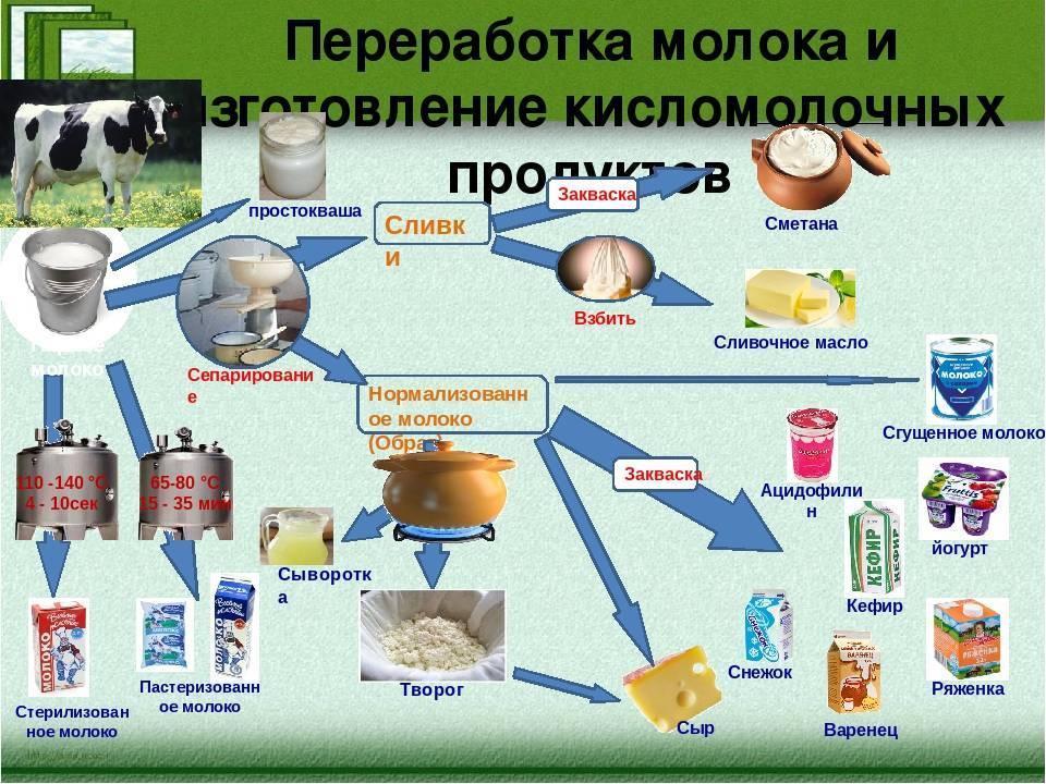 Утилизация пищевых отходов по санпин: правила и способы — портал о ломе, отходах и экологии