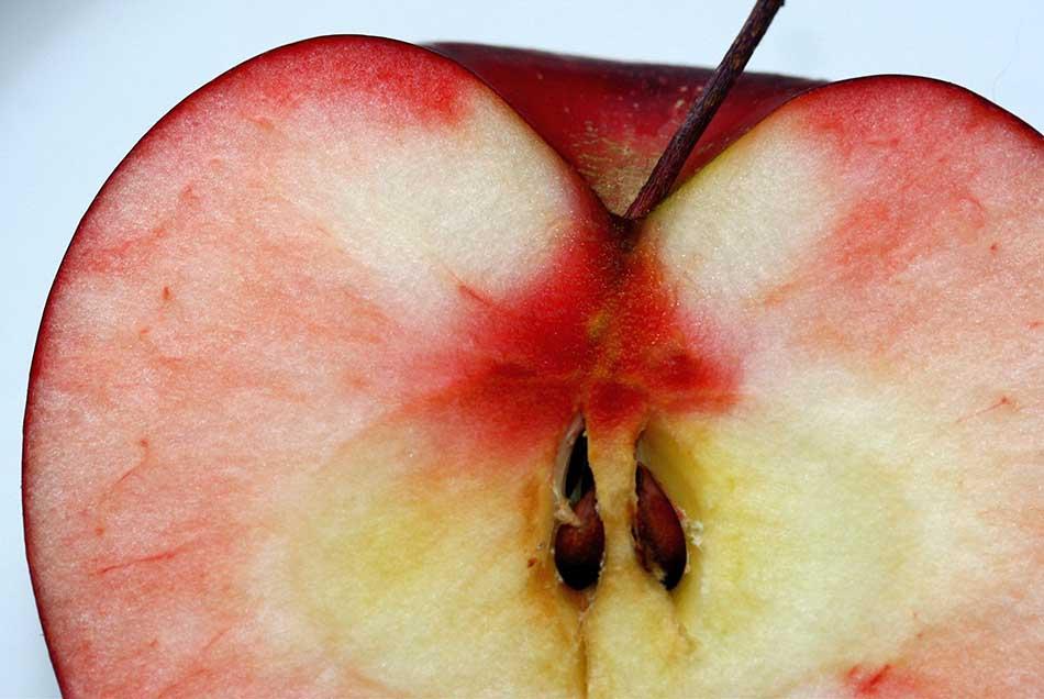 Вредны ли косточки от яблок