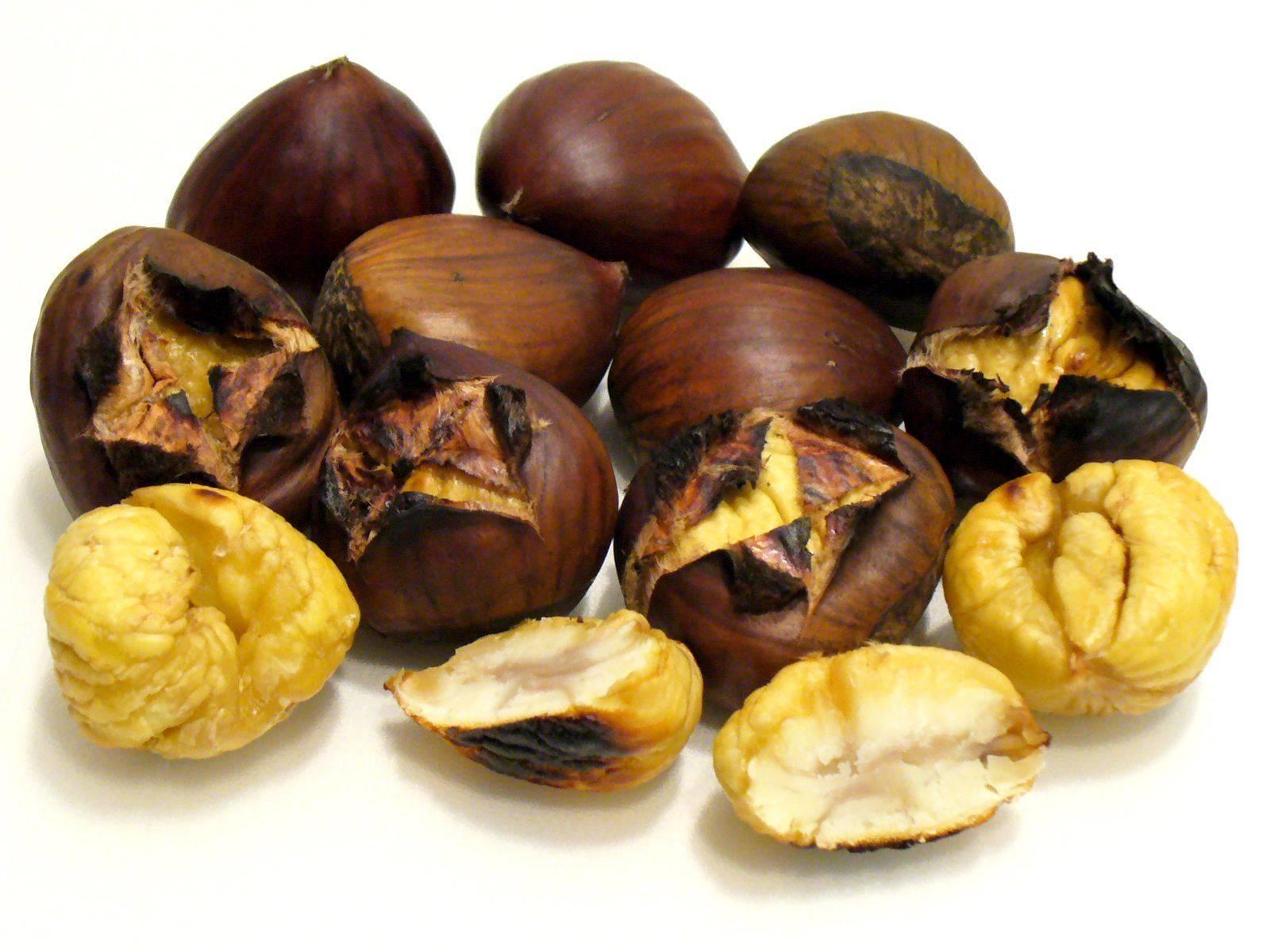 Орех каштана: лечебные свойства, применение и употребление в пищу