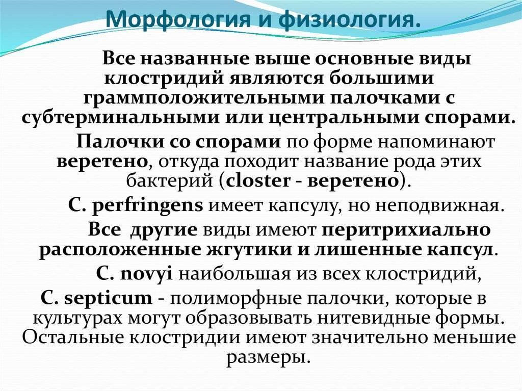 Общая микробиология классификация и морфология микроорганизмов физиология микроорганизмов иммунология презентация, доклад, проект