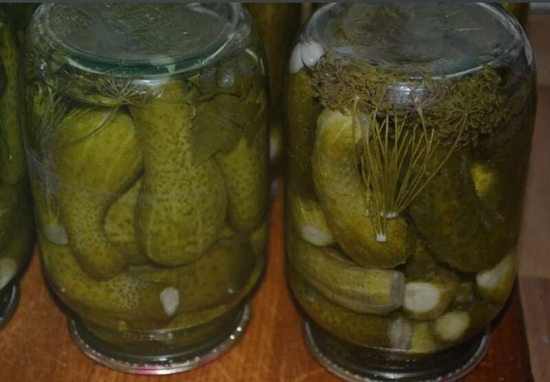 Квашеные огурцы на зиму в банках как бочковые – простые рецепты засолки огурцов