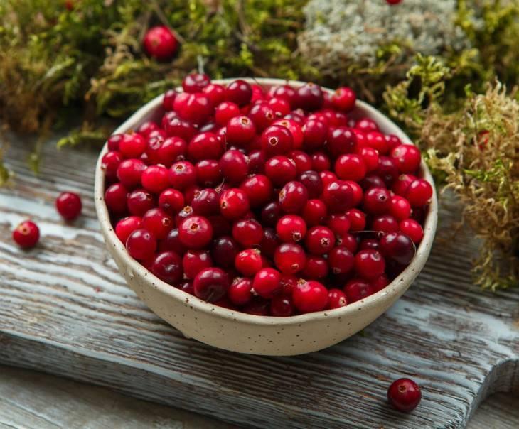 Клюквенная наливка – 13 лучших рецептов с пошаговым приготовлением