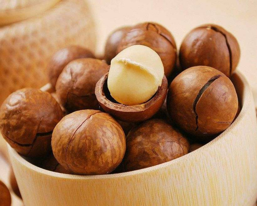 Орех макадамия – польза и вред, описание, фото, где растет