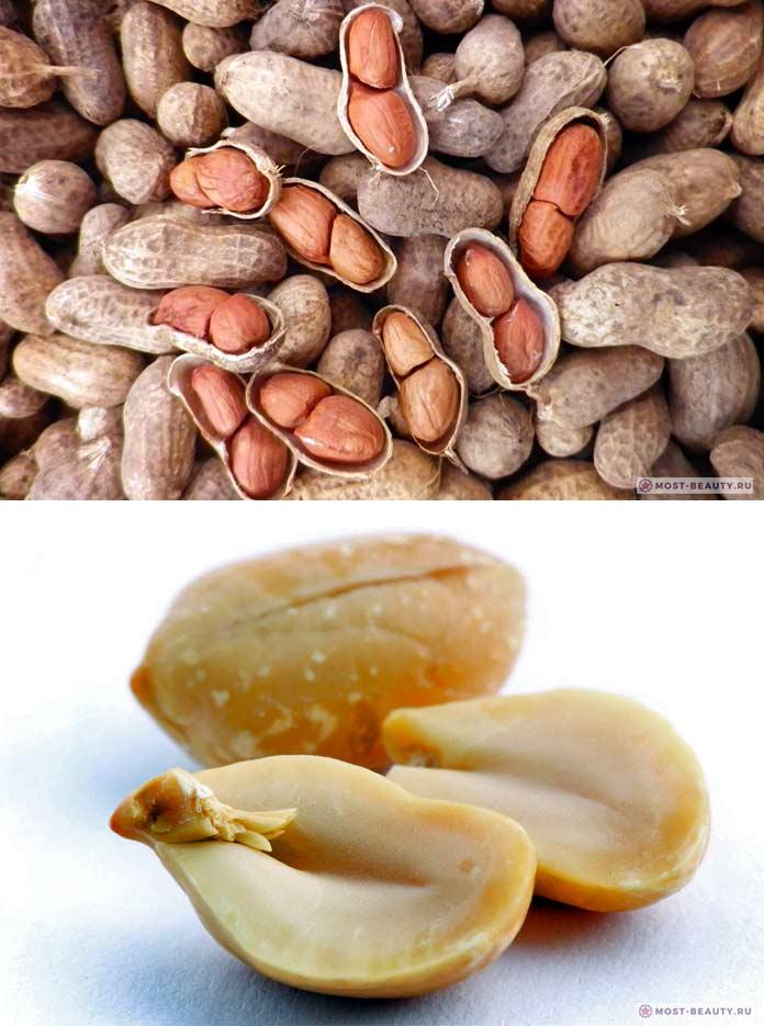Арахис: польза и вред для организма, сколько нужно съесть