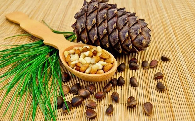 К чему снятся орехи - лесные и грецкие орехи к чему снятся