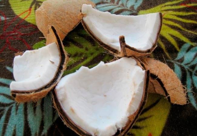 Кокос: польза и вред для здоровья организма, уникальные свойства