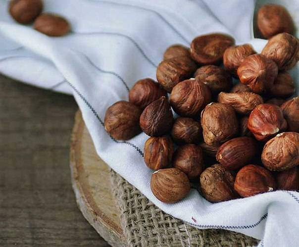 Фундук орехи: польза и вред для организма, сколько нужно съесть