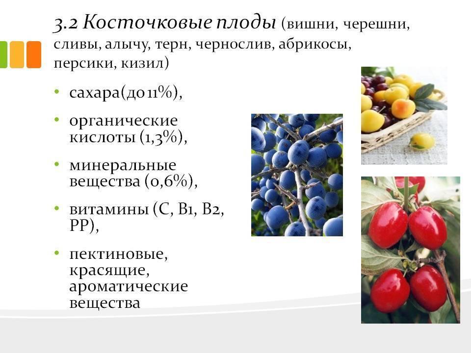 18 советов, как сохранять свежесть овощей и фруктов