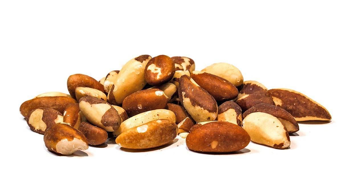 Бразильский орех: противопоказания, польза и вред, рецепты