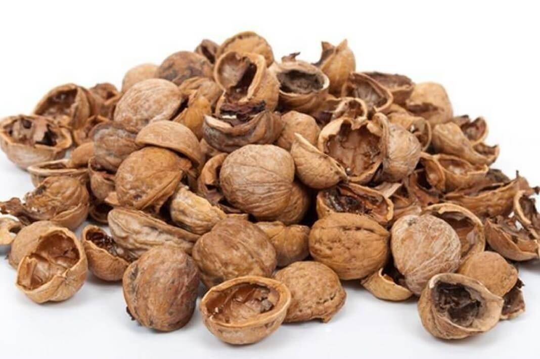 Скорлупа грецкого ореха: лечебные свойства, применение, рецепты