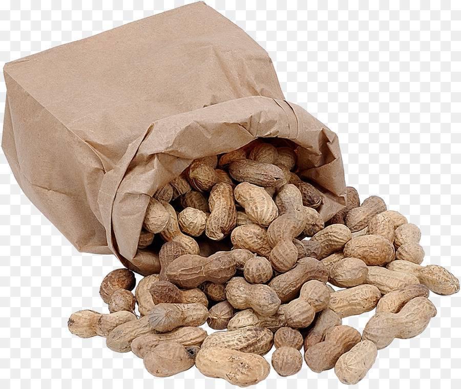 Всё о том, как хранить грецкие орехи в домашних условиях