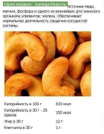 Кешью - польза и вред орехов для организма