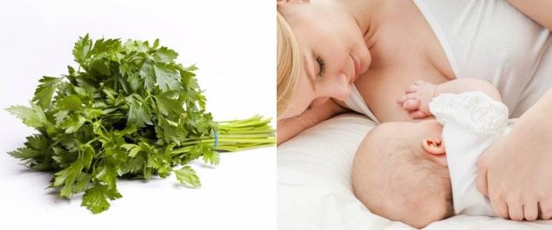 Допустимы ли фисташки в меню кормящей мамы? можно ли фисташки при грудном вскармливании.