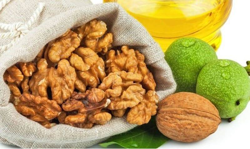 Масло грецкого ореха: польза и вред, как принимать, особенности состава