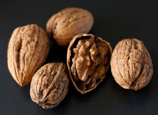 Полезные свойства ореха пекан, противопоказания, особенности выращивания и употребления в пищу