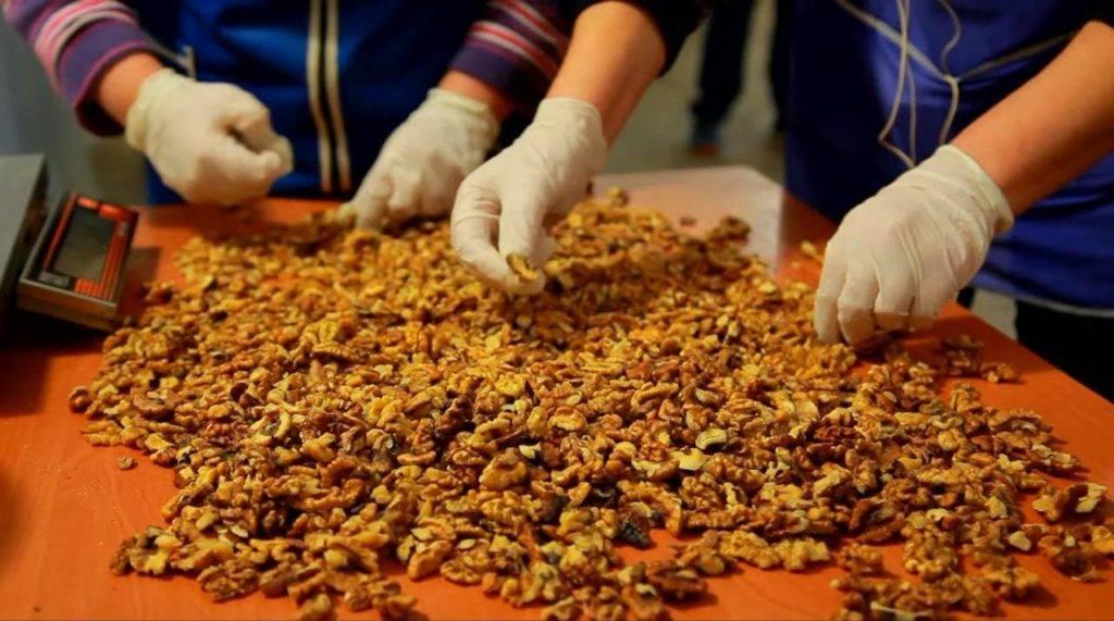 Нужно ли мыть кешью перед употреблением: как подготовить орех к приему в пищу, каким образом просушить после воды, какая есть альтернатива?