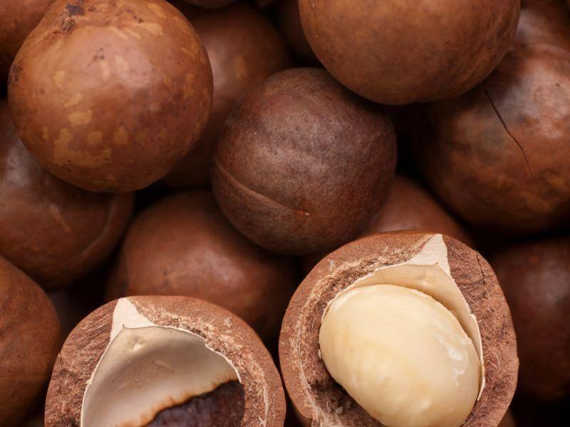 Почему орех макадамия имеет различные вкус и запах? обрабатывают ли плоды перед продажей?