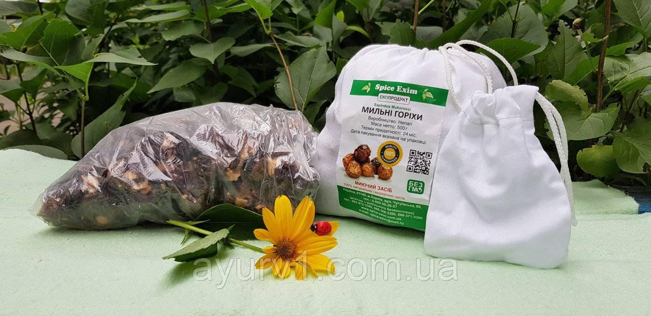 Мыльные орехи: натуральное средство для стирки