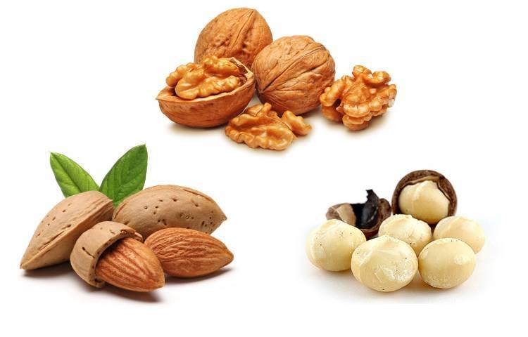 Разновидности орехов, какие бывают, названия
