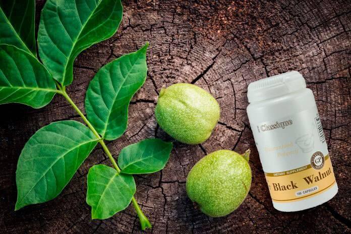 Черный орех: лечебные свойства и противопоказания, польза и вред