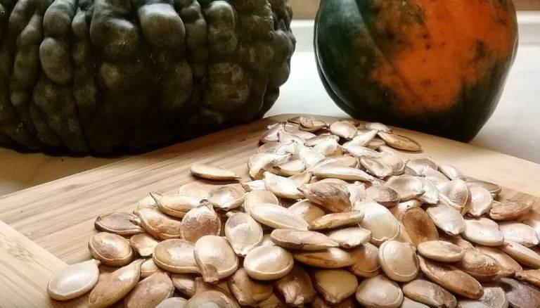 Очищенные тыквенные семечки: польза и вред, калорийность, способы применения