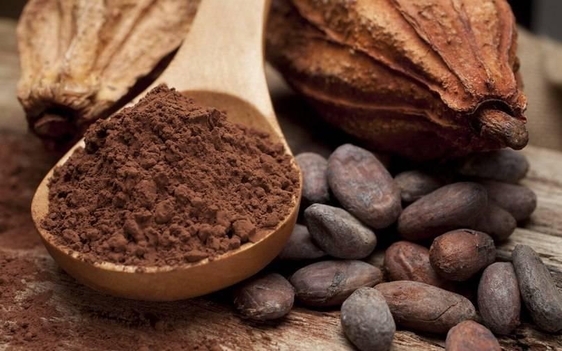 Чем полезно какао? - список плюсов