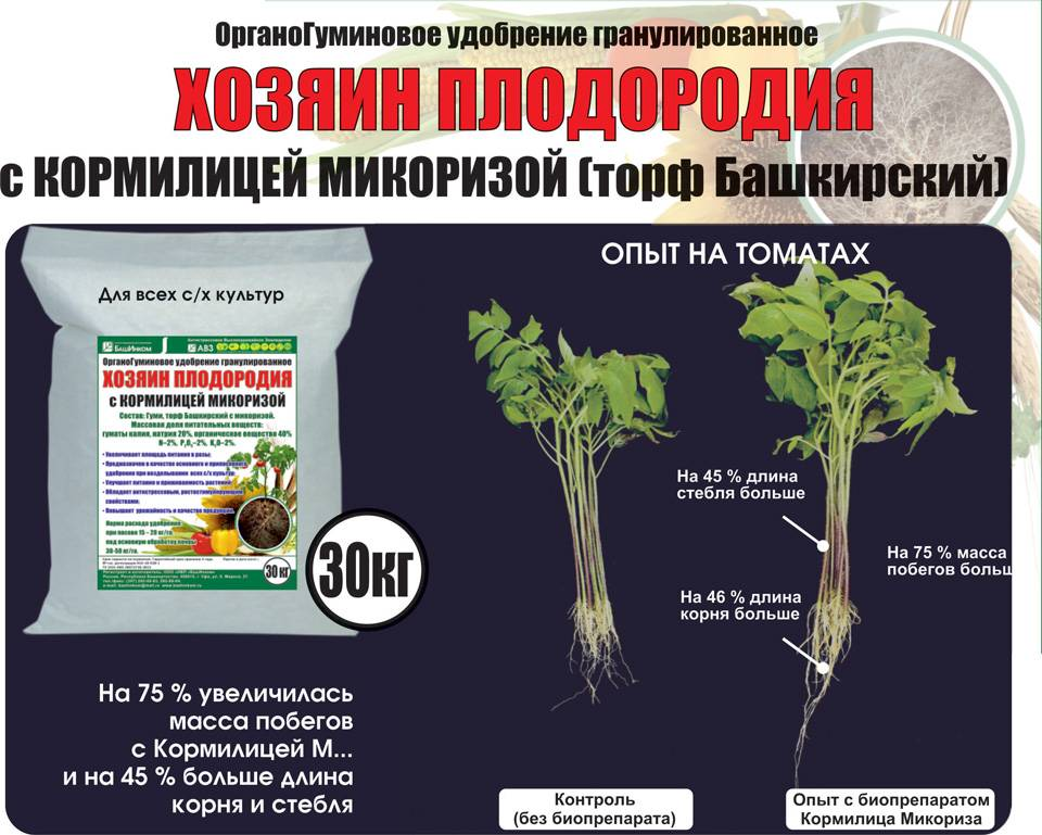 Биоудобрения для сада и огорода - как выбрать лучшее для повышения урожайности по составу и стоимости