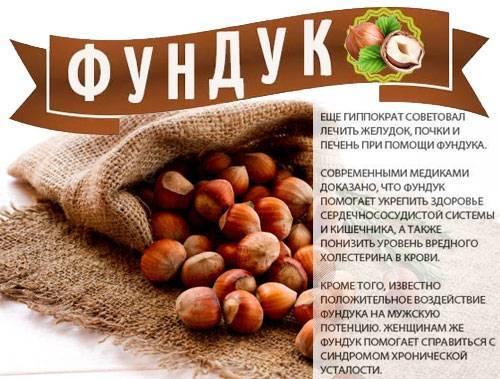 Авокадо: полезные свойства и вред для организма, калорийность, бжу на 100 грамм