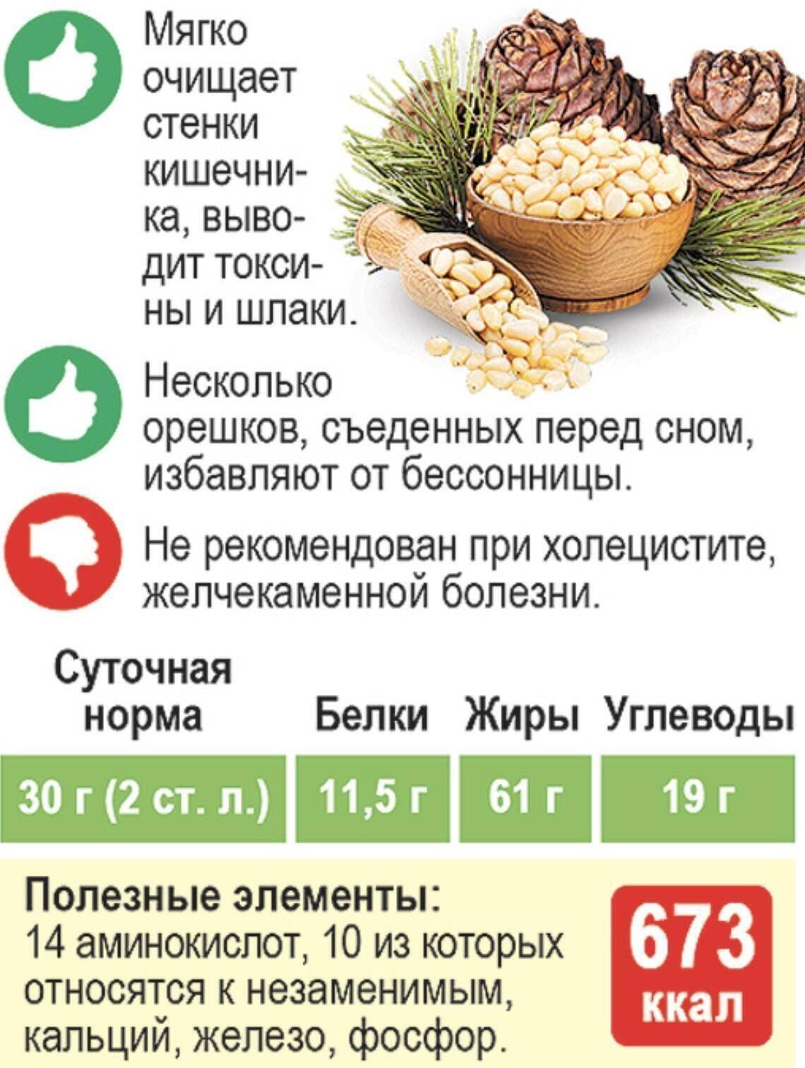 Вкусные и полезные кедровые орехи: как подобрать орешки в скорлупе, нужно ли замачивать, как правильно есть?
