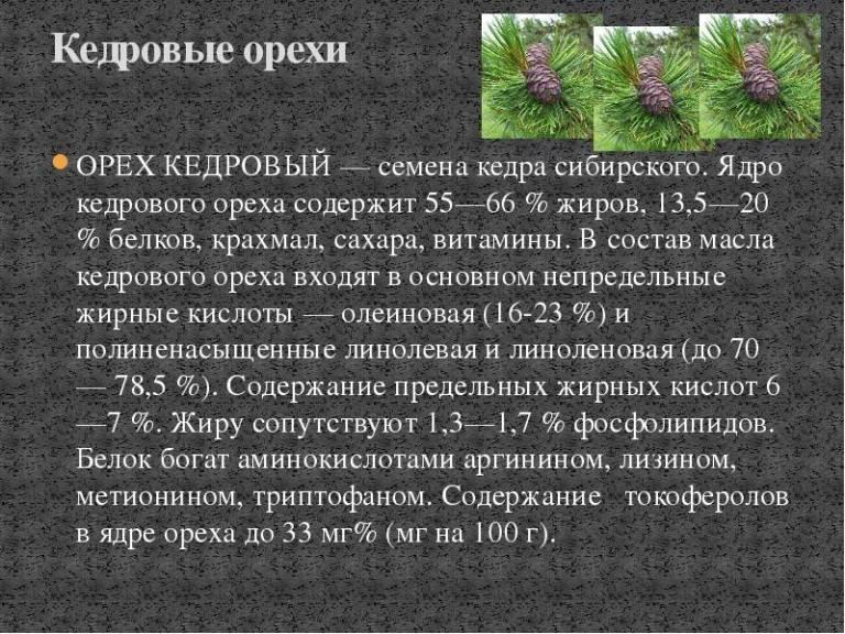 ✅ кедровые орехи детям: с какого возраста ребёнку можно есть орешки, польза и возможный вред - tehnoyug.com