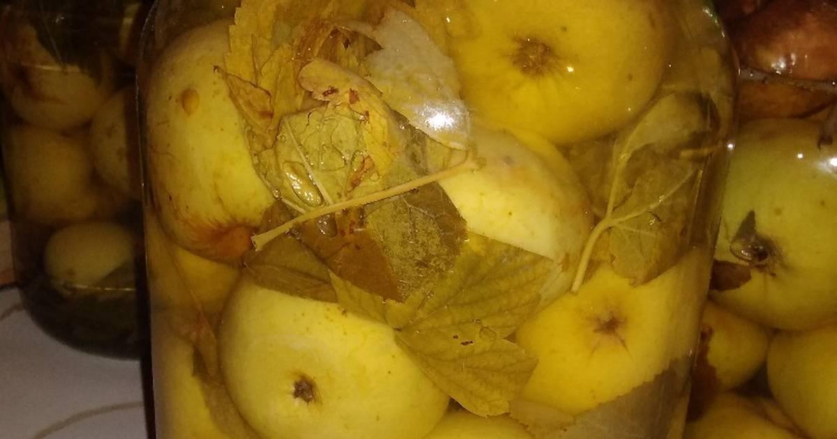 Моченые яблоки в домашних условиях – витаминизация началась! лучшие рецепты моченых яблок в домашних условиях в бочках и банках