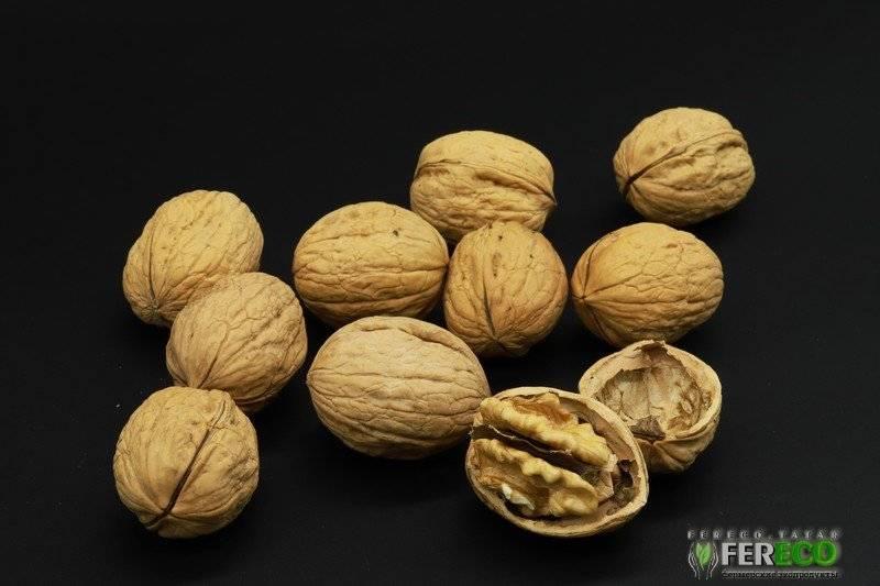 Usda fas: анализ ореховой отрасли чили за 2015 год — портал ореховод