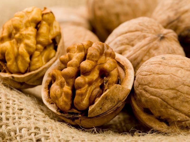Грецкие орехи при беременности: можно ли беременным их есть? польза и вред на ранних и поздних сроках. свойства киви и противопоказания к их употреблению