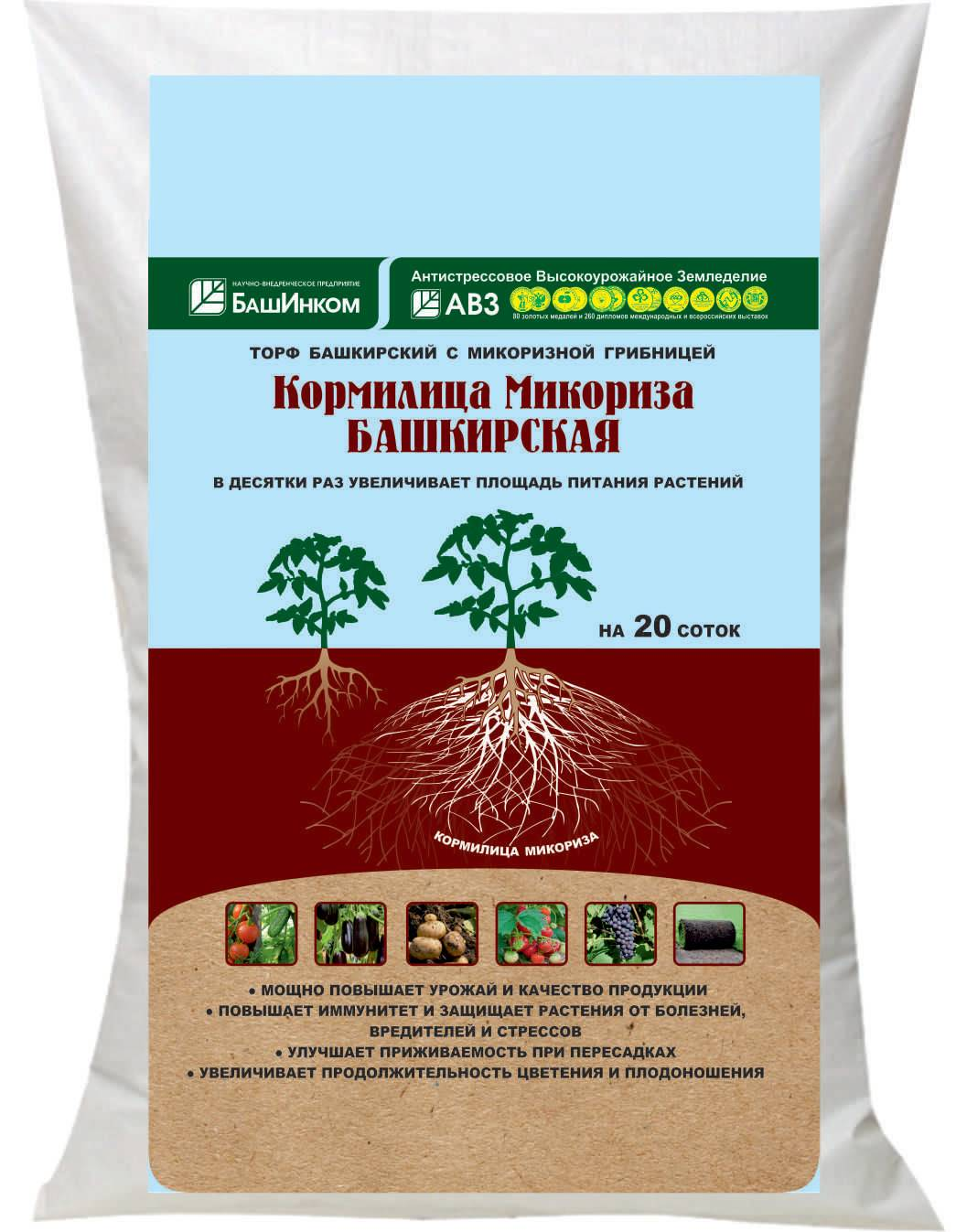 Микоризы: природные биоудобрения почв — портал ореховод