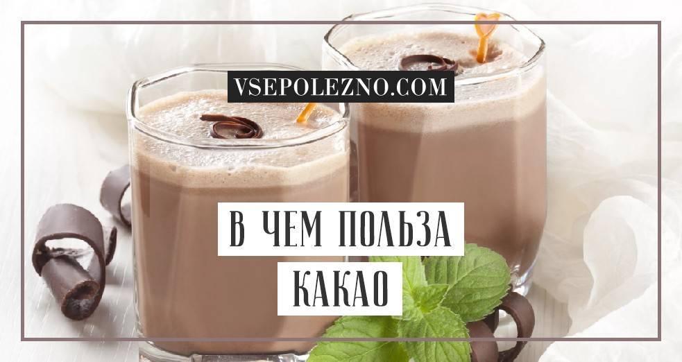 Свойства и способы применения какао порошка