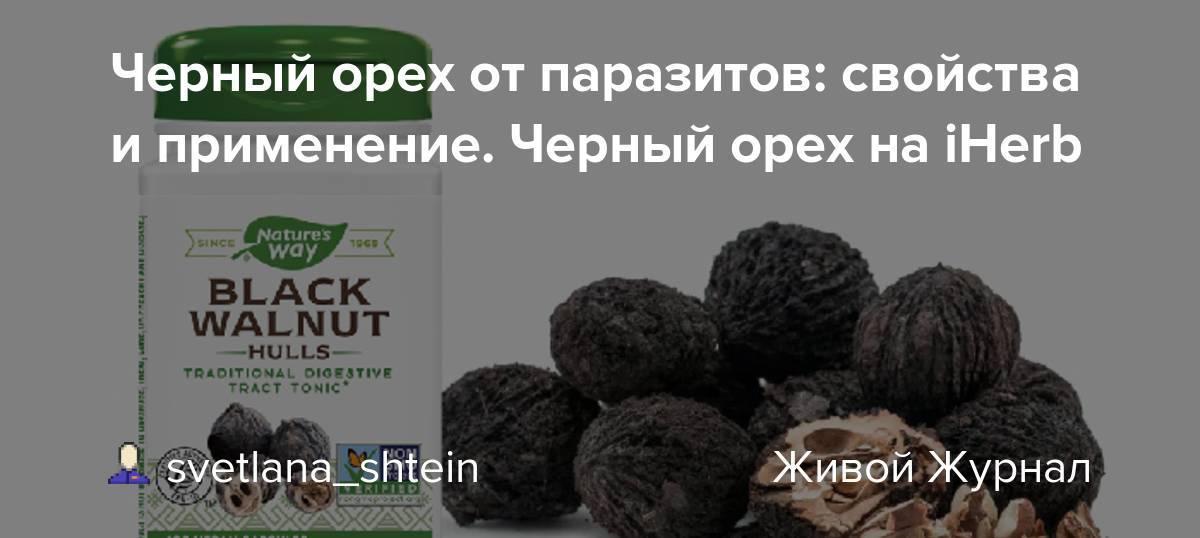 Черный орех — полезные свойства и вред