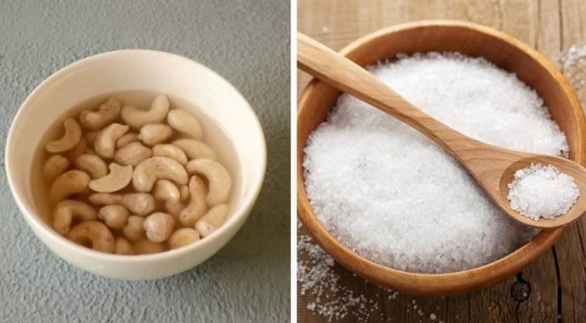 В чем польза ореха макадамия для организма?