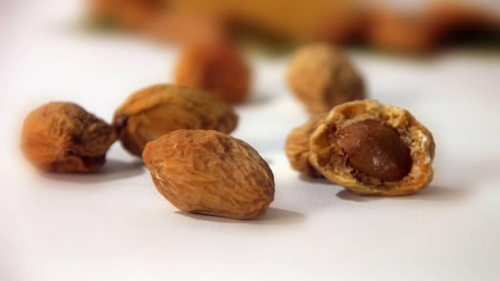 Урюк: польза, вред, состав, применение, калорийность и свойства сушеного абрикоса