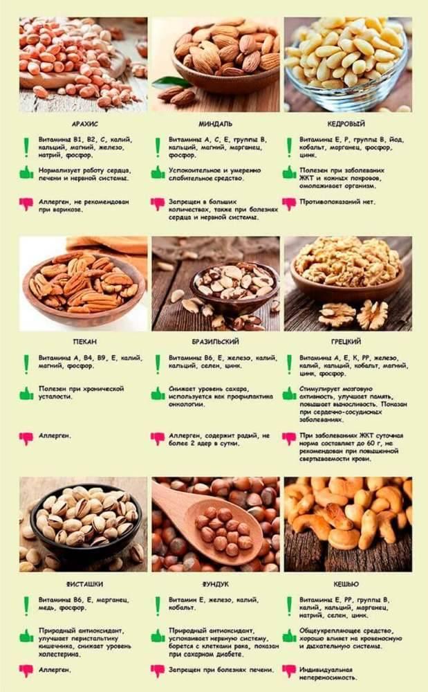 Лучшие и самые полезные орехи для организма