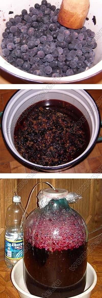 Вино из винограда – 7 простых рецептов в домашних условиях