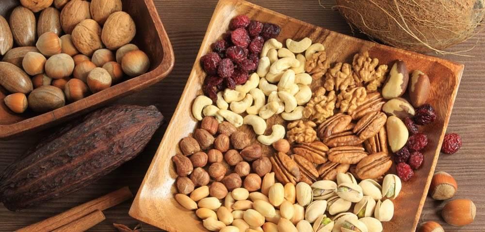Куст фундука с орехами