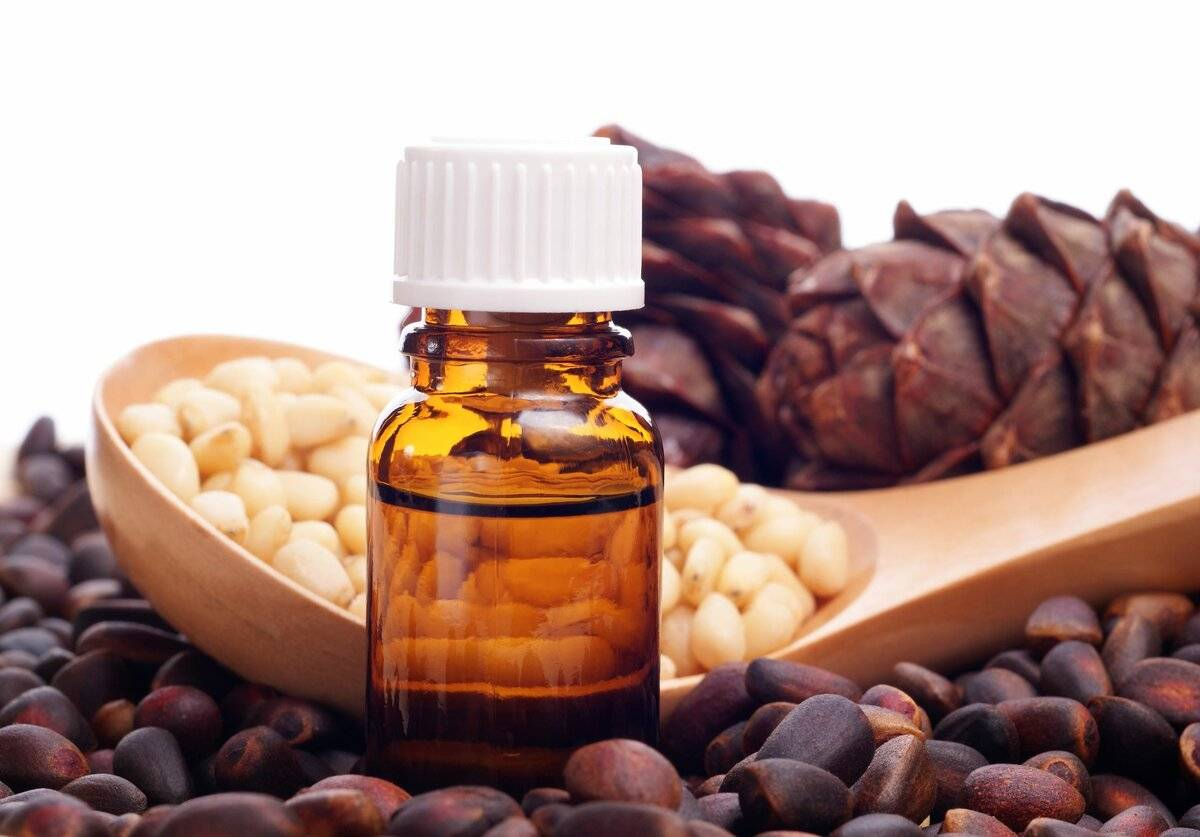 Кедровое масло: полезные свойства и вред, применение