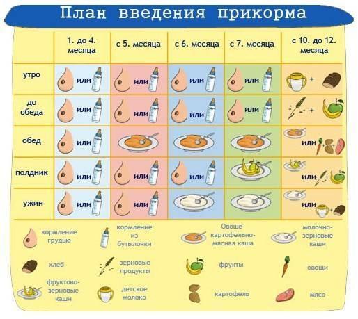 С какого возраста можно детям кунжут? | zdavnews.ru